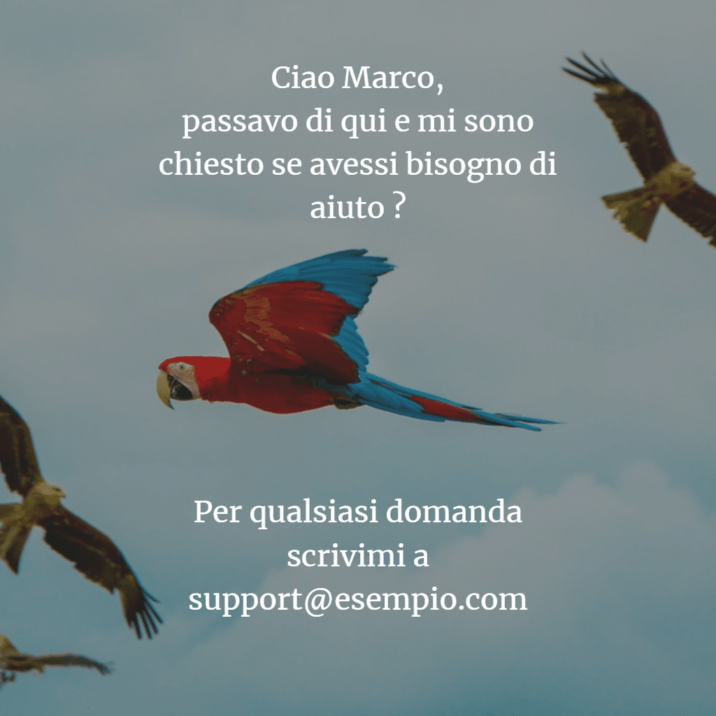 Drip marketing email supporto Newsletter2Go